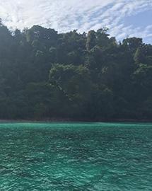 Emerald Heart Island - 2 Days Trip