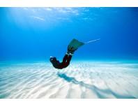 Free Diver Advanced Course